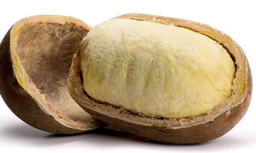 Burro di Cupuaçu per idratare la pelle secca e matura