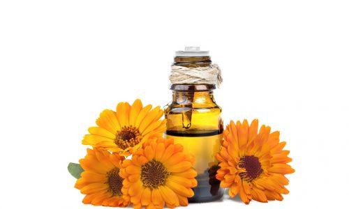 Oleolito di Calendula: l'elisir di bellezza per pelli arrossate o irritate