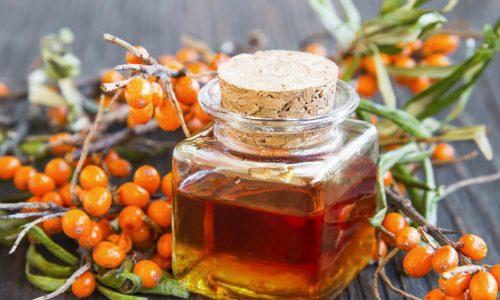 Olivello Spinoso, nei cosmetici il frutto sacro dell'Himalaya