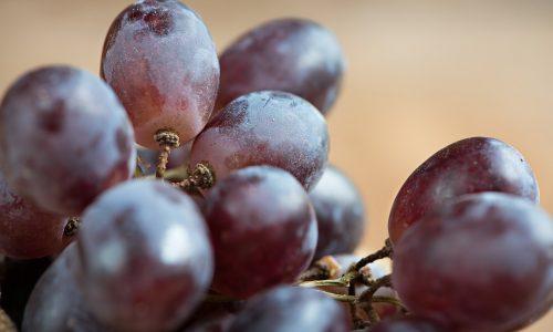 Dal frutto ai cosmetici: ecco i benefici dell'uva per la pelle